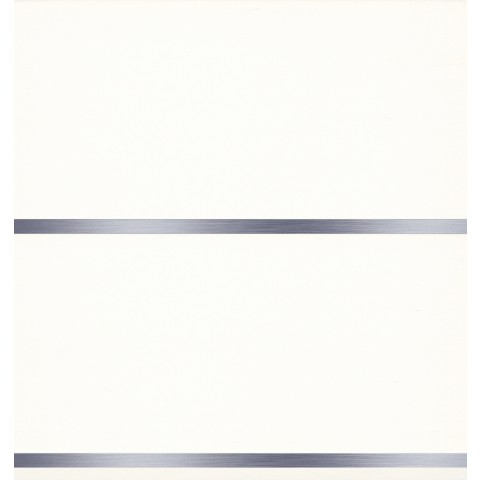 Roomliner Ceiling Panel 250mm x 2.6m White Silver Strip Pk4