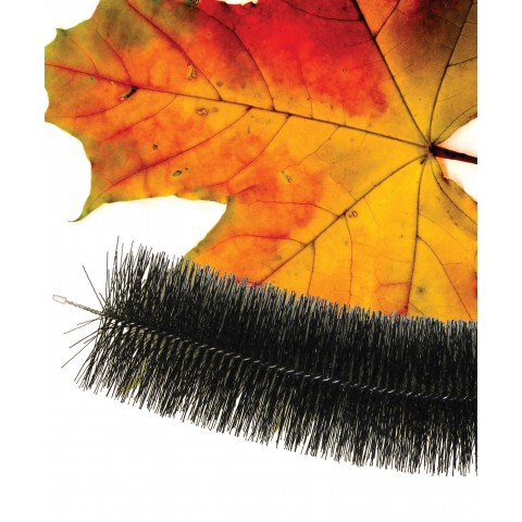 Gutter Brush 4m Length Black